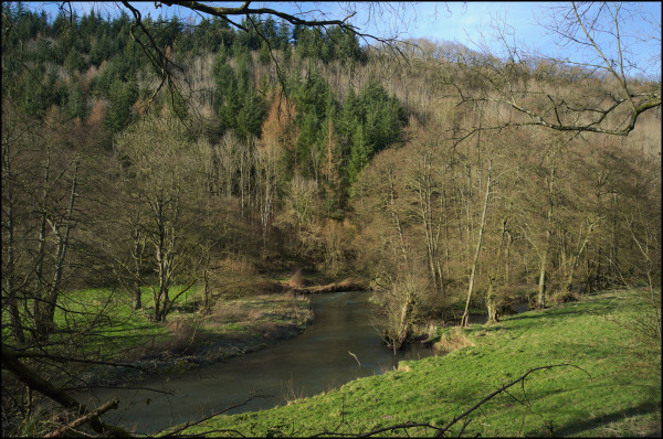 Aymestrey - River Lugg