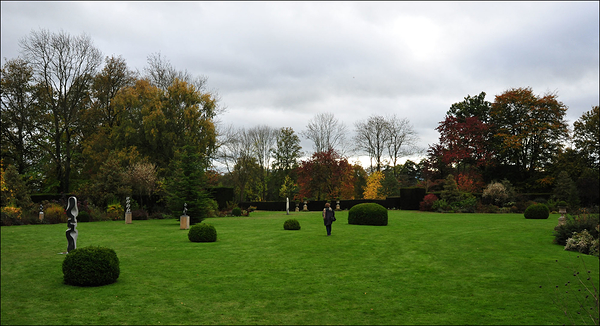 The 'English' lawn