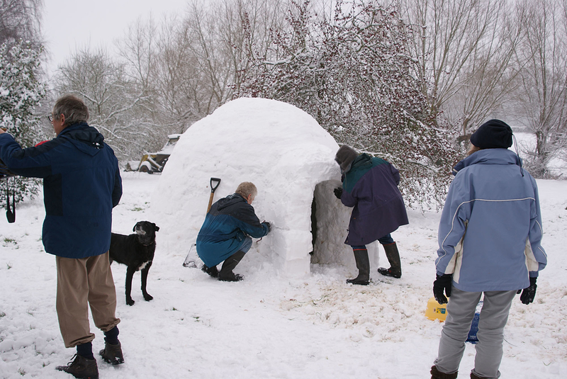 Igloo Builders 2010