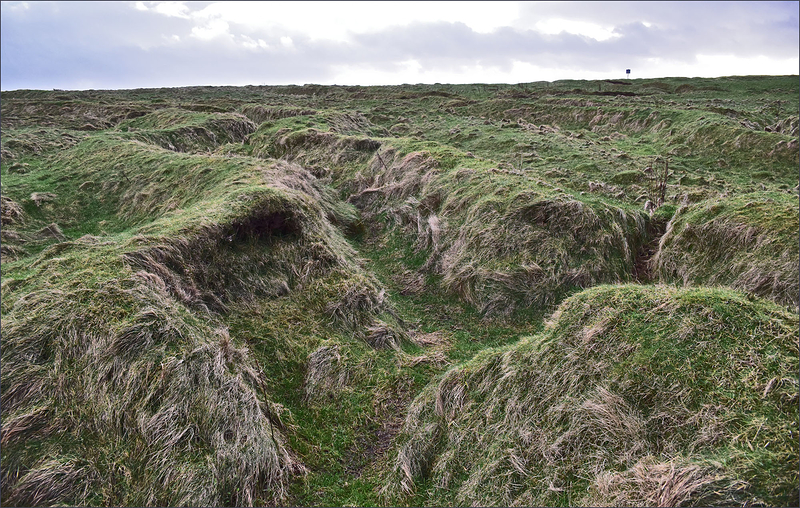 Trenches WWI