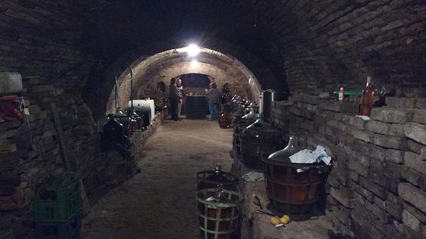 Moravian Cellar
