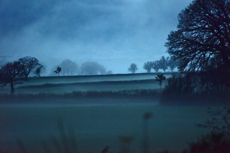 A misty eventide