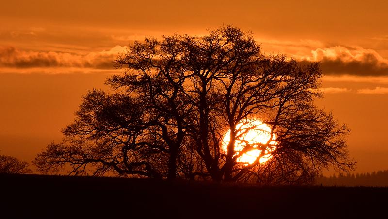 New Sun Rise
