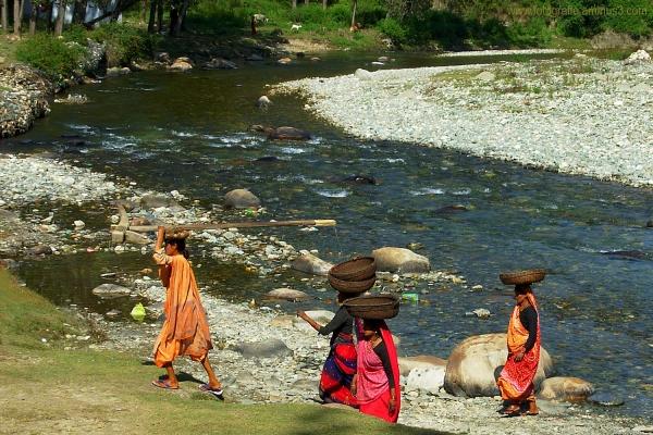 Indian Rural Women at work