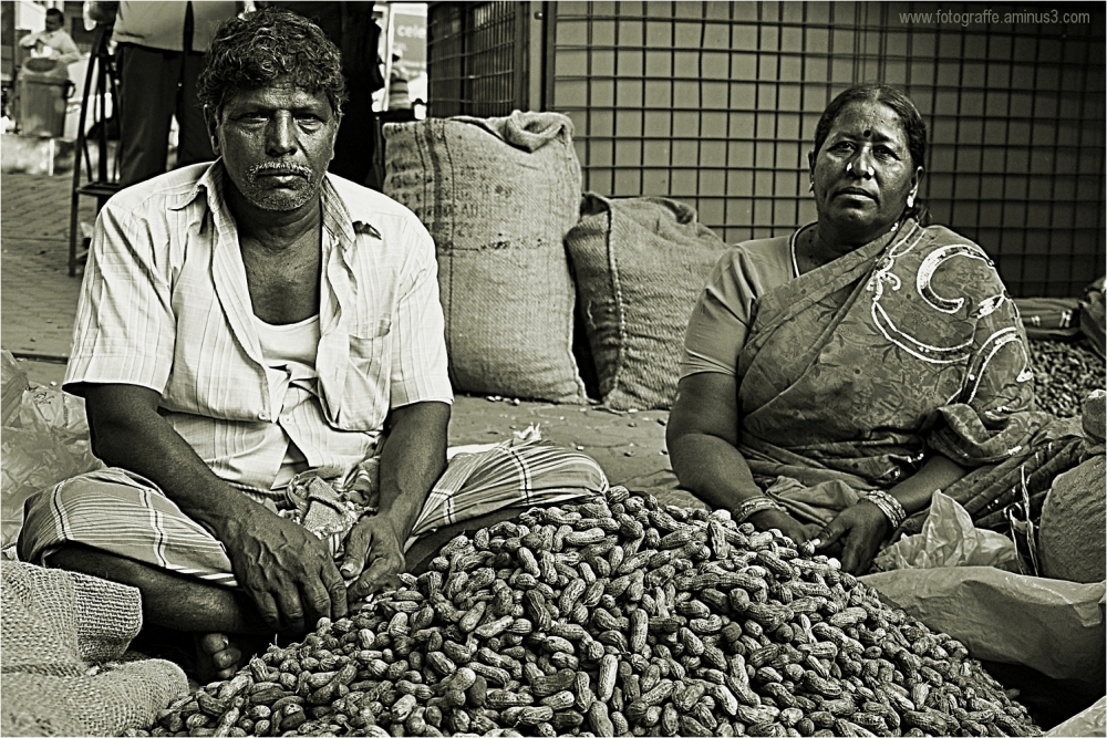 Groundnut Fair Bangalore Kadlekai Parishe