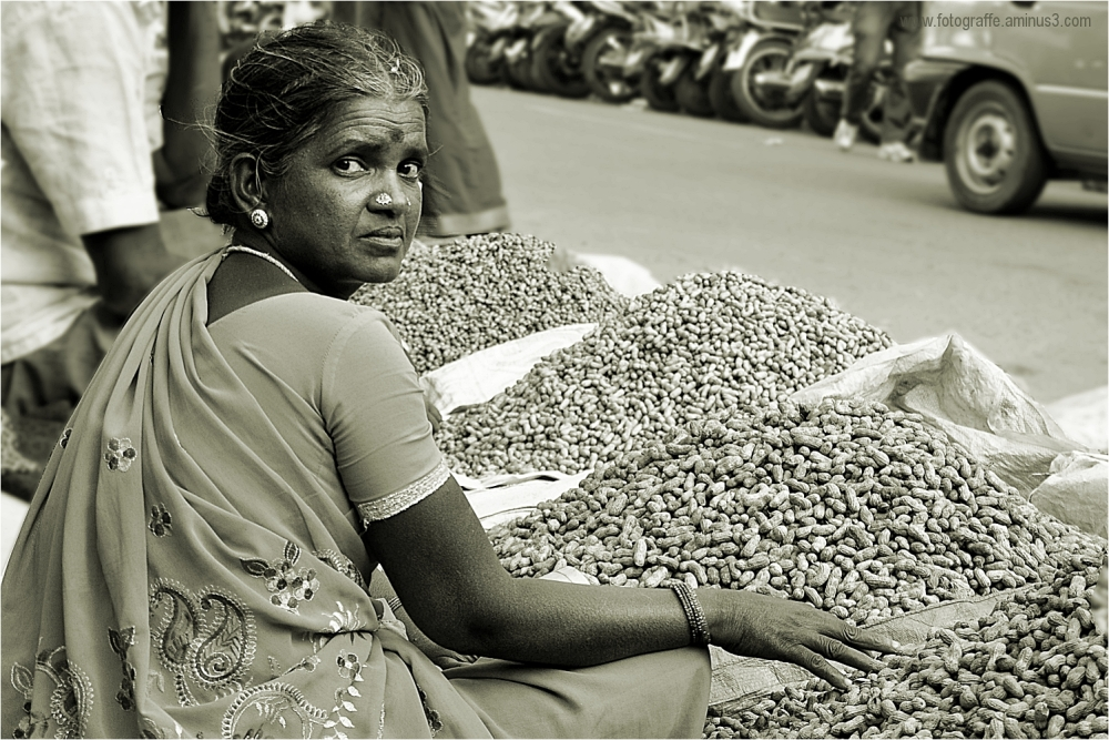 Groundnut Fair Bangalore Kadlekai Parishe 2012
