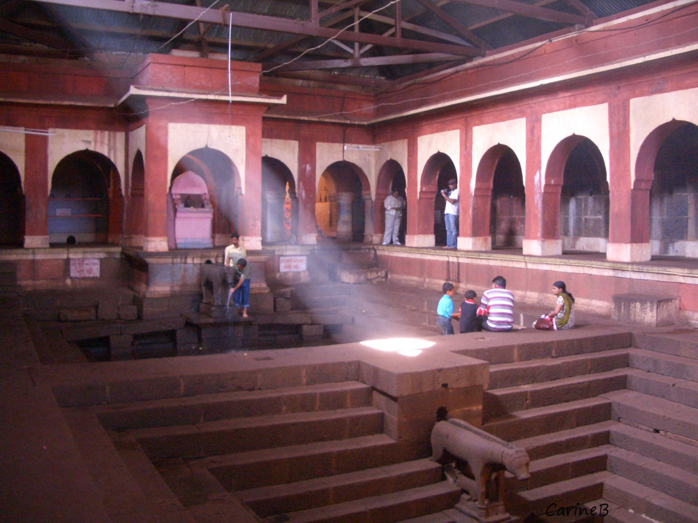 Unclassifiable 5 Mahabaleshwar India