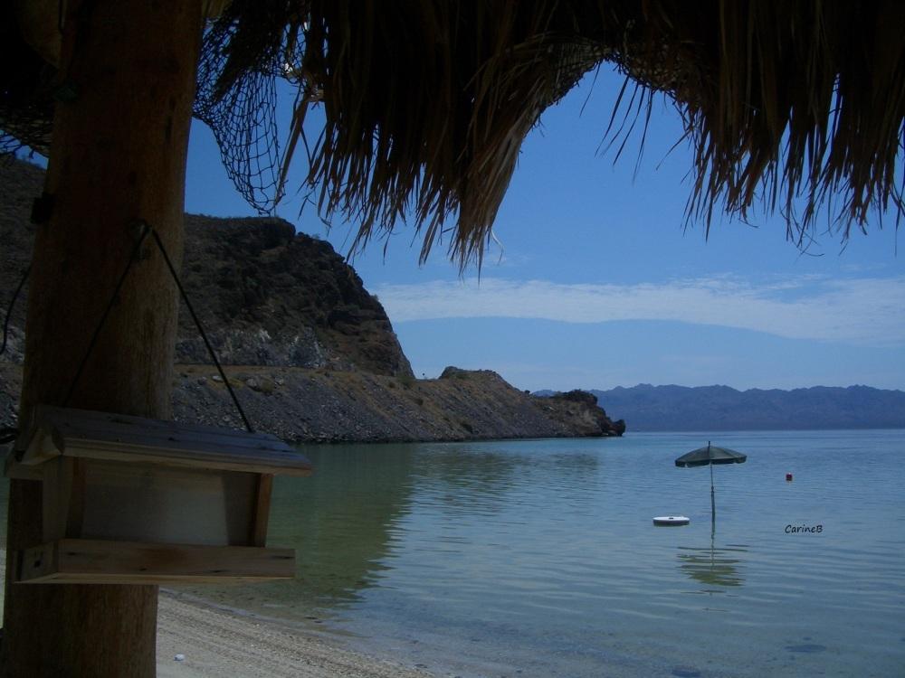 El Buro Baja California Mexico