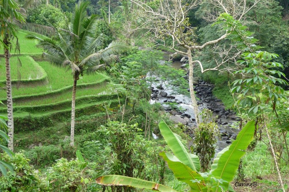 Bali Indonesia Asia  2