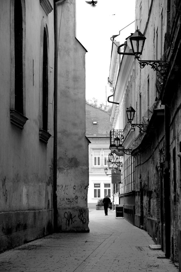 Sovice Czech Republic