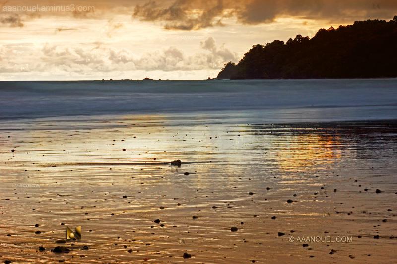 Espadilla beach aaanouel costa rica manuel antonio