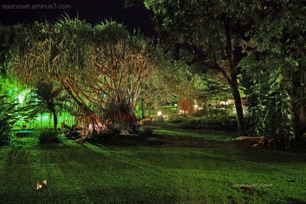 Karahé hotel Espadilla beach aaanouel night garden