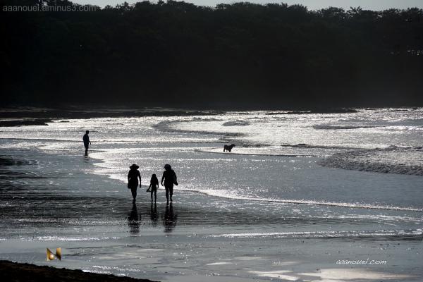 Tamarindo beach aaanouel costa rica silver sands