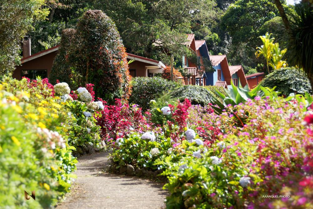 Tirol hotel gardens flowers aaanouel costa rica