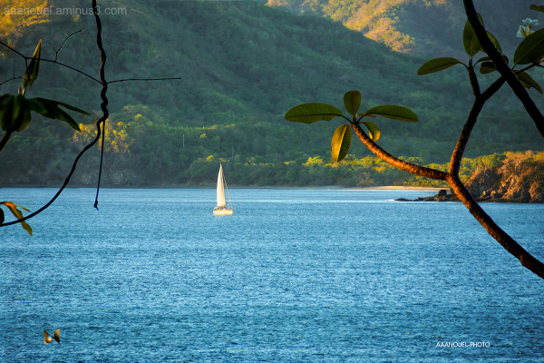 Flamingo Sailboat Guanacaste Costa Rica aaanouel