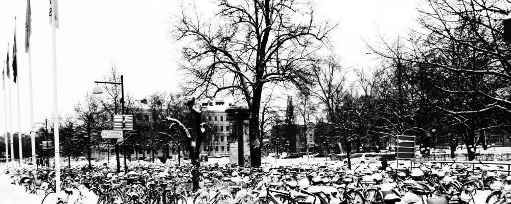 زمستان، سوئد، لینشوپینگ