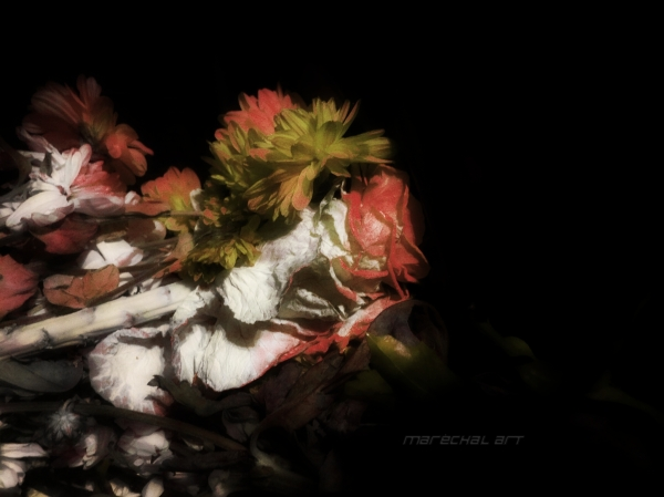 Bouquet of withered flowers