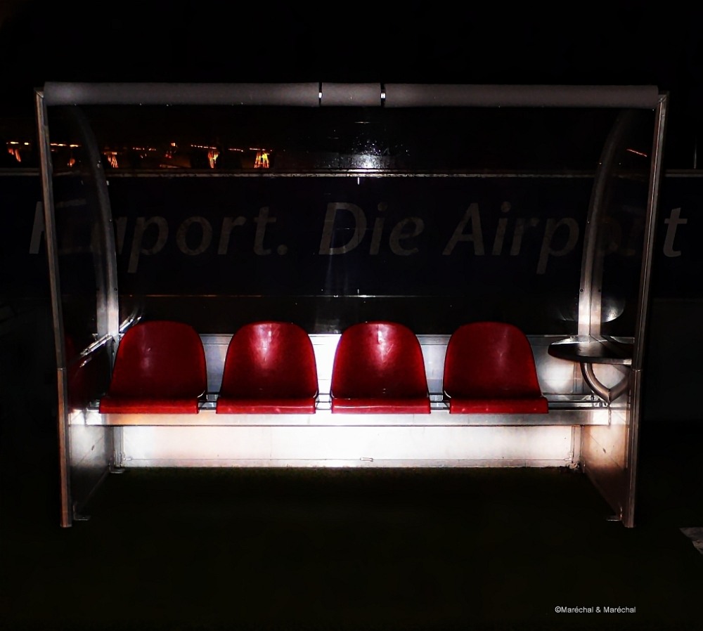 Coach´s Bench at night
