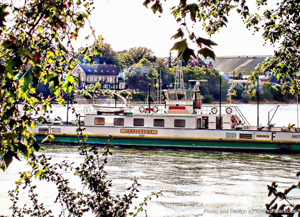 Rhine River Ferry Boat