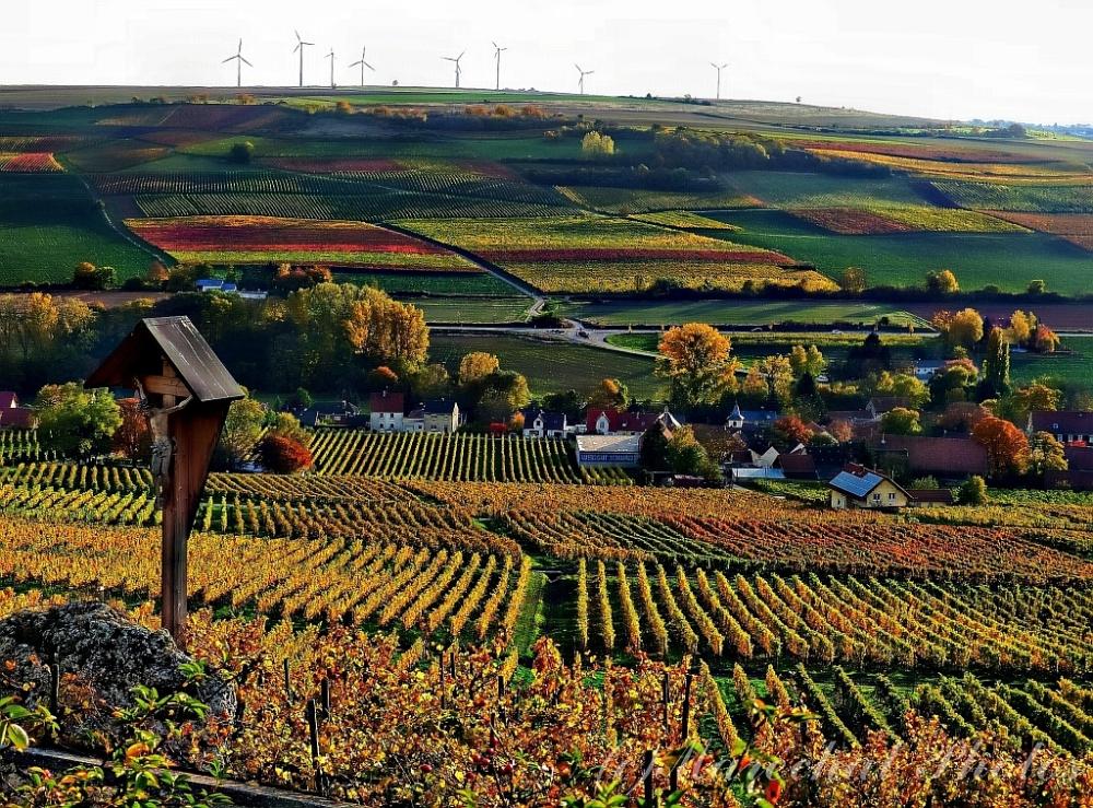 Panoramaweg Zellertal