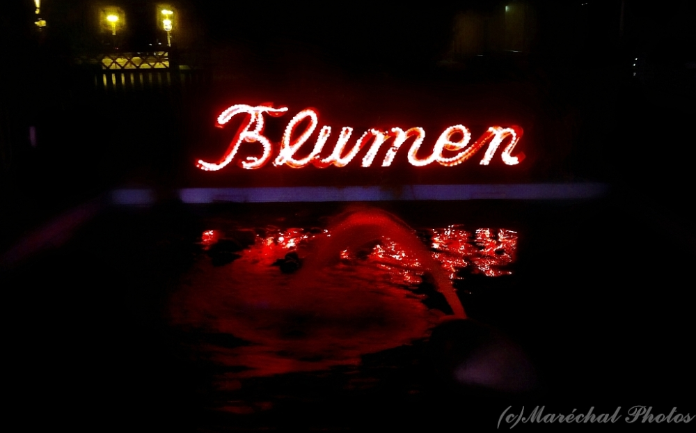Flower fountain at night