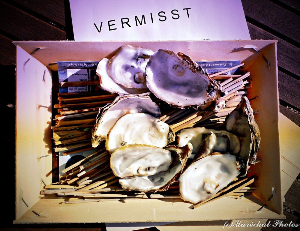 Six Oysters Missing