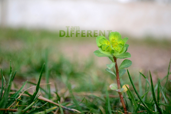 I'm different .