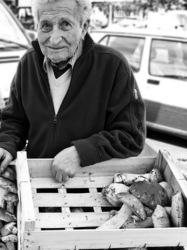Le marchand de cèpes