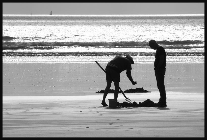Quinzaine Bretonne - 12. Les fossoyeurs de la mer