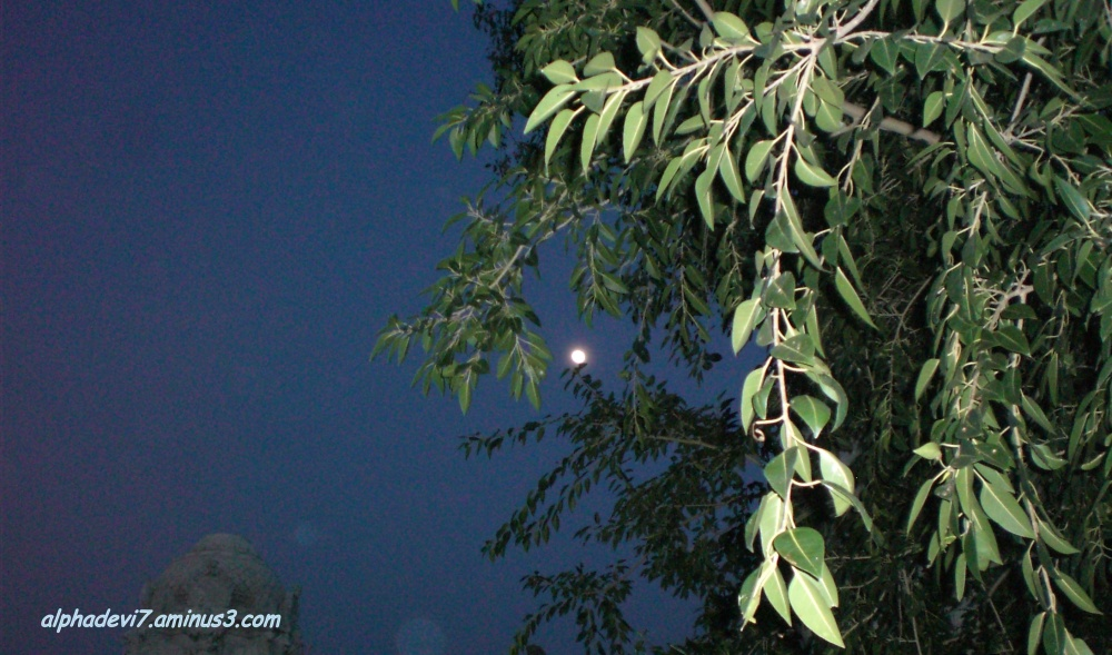 Two days before full Moon...