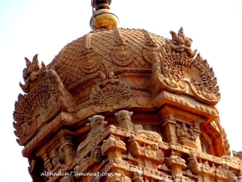 thanjavur big and beautiful singles Thanjavur - templenet focuses this week on the glorious temples attributedto the reign of raja raja chola and his successors in the thanjavur cauvery belt of south india.