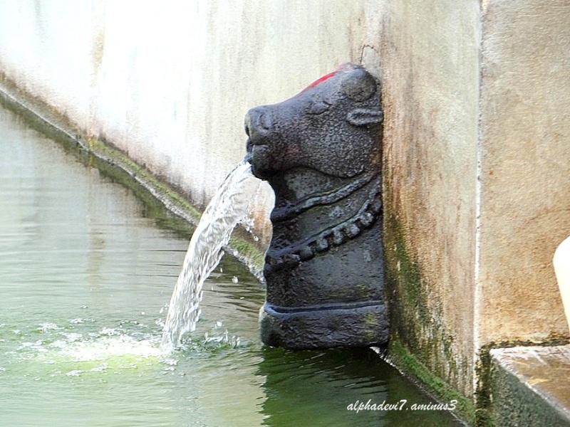 The nonstop flow
