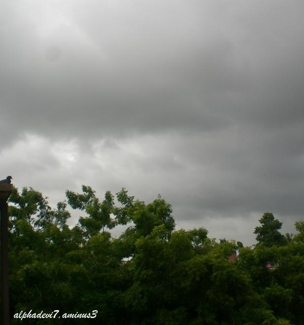 Threatening clouds!!