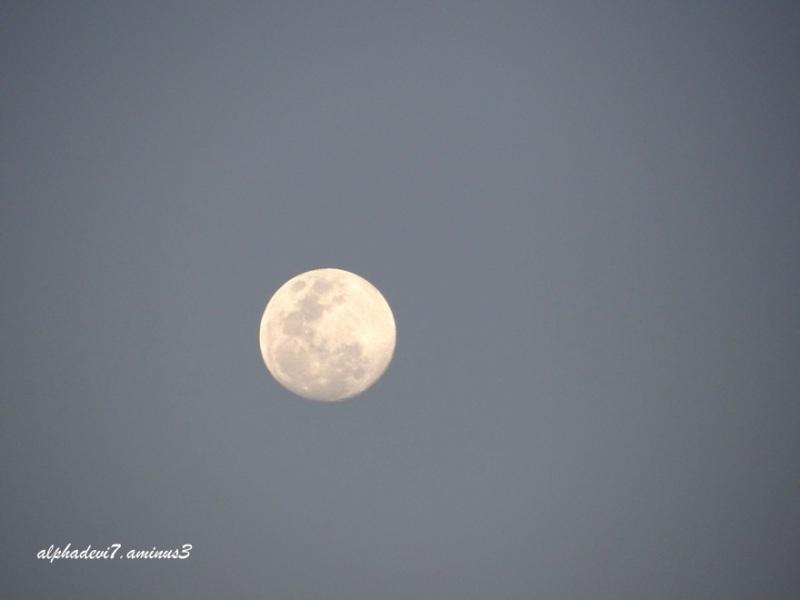 It was full moon