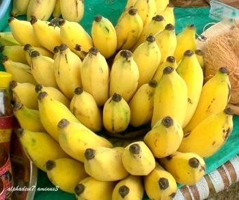 bananas galore