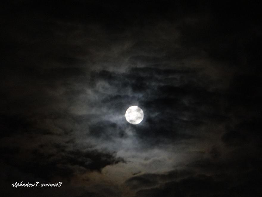 The monsoon Moon  1