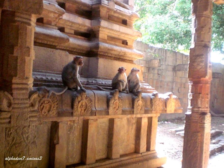 Temple Architecture  9
