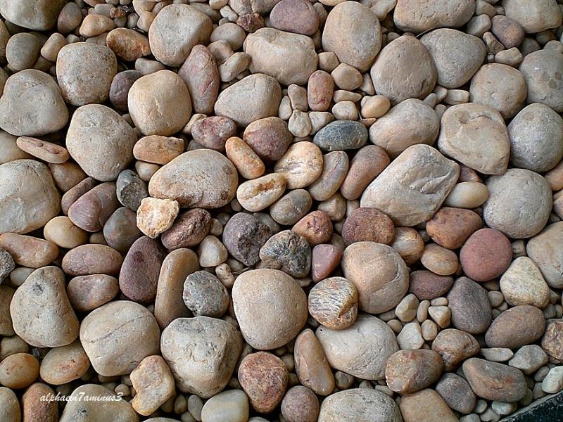 Pebbles / rocks