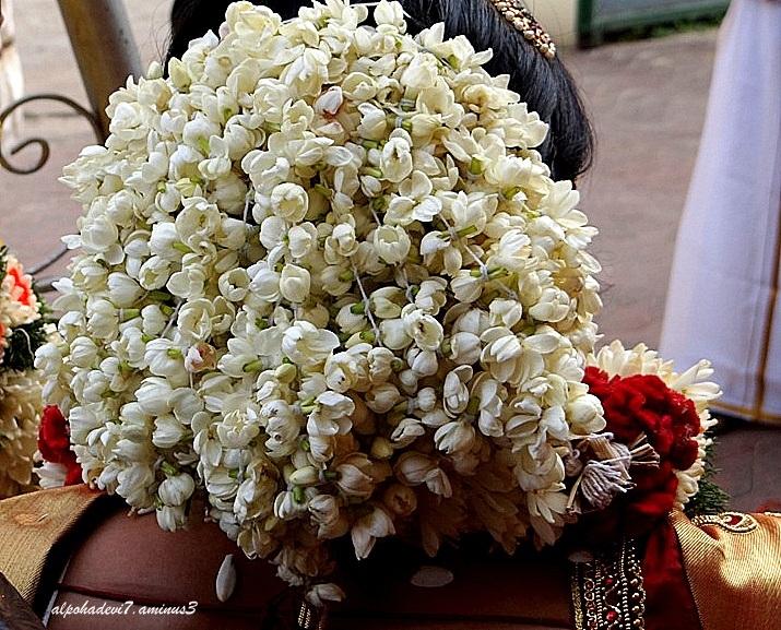 A Wedding  2