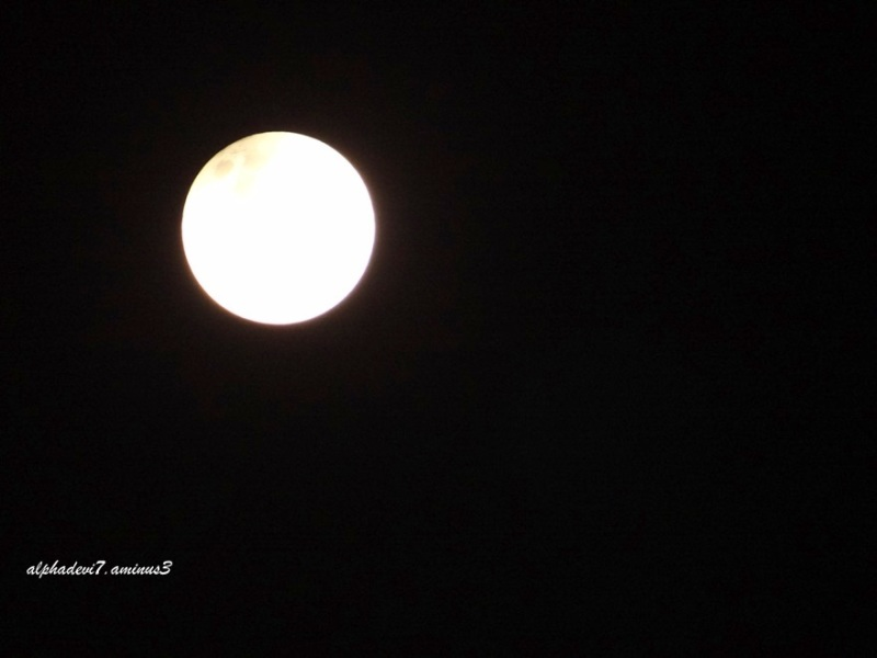 Red Blood Moon 7
