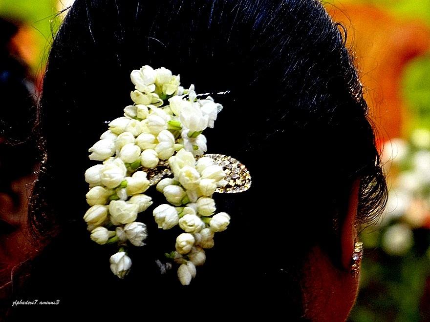 Flowers & a Jewel Clasp