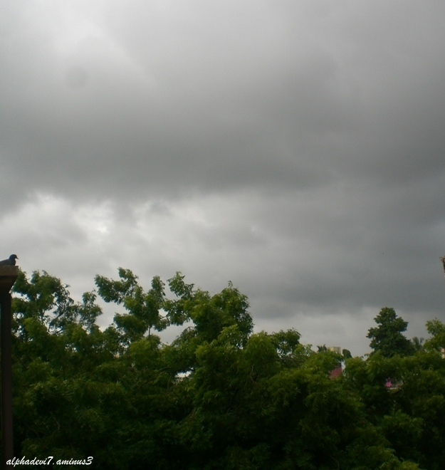 The Rain Clouds...
