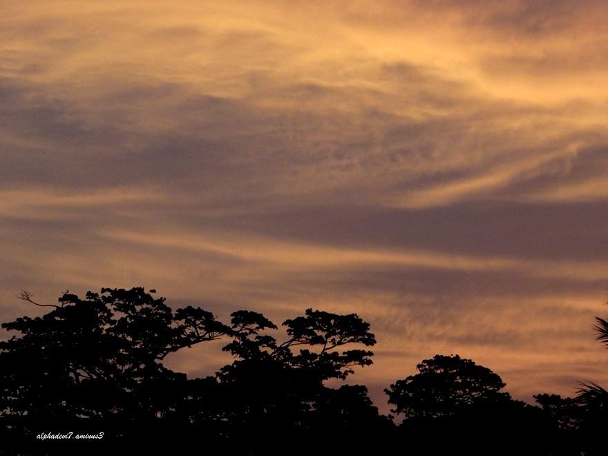 The Dawn sky   2