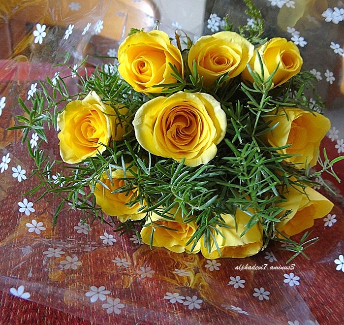 The Bouquet of Yellow Roses...
