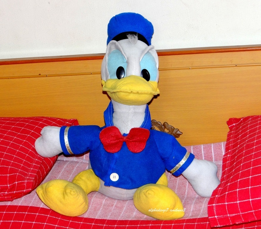 My Very Own Donald.....