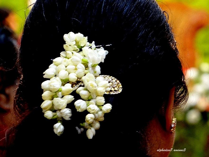 Jasmine on her hair..