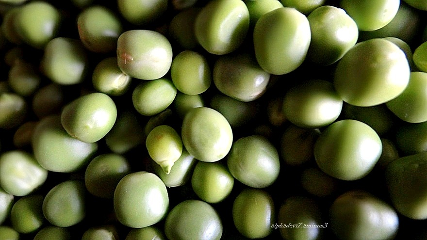 The Shelled peas