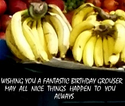HAPPY BIRTHDAY  DEAR  GROUSER:)))