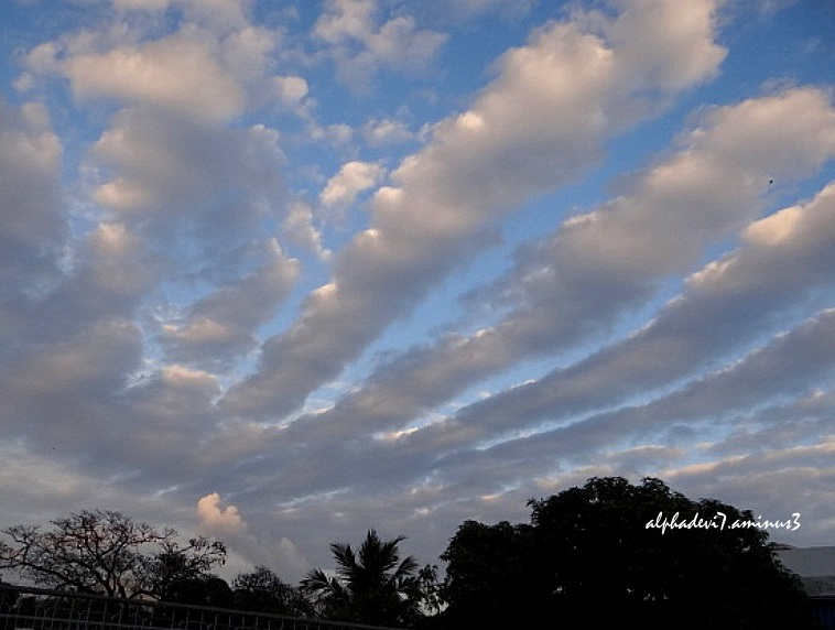 The Clouds   2