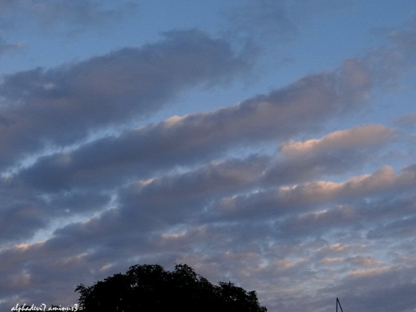 The  Clouds   3